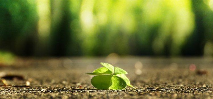 Zmieniajmy życie małymi krokami