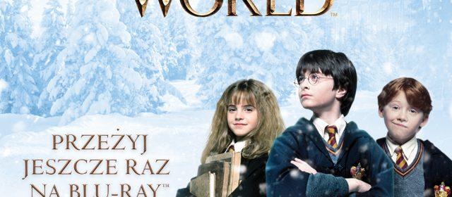 """Magia Świąt Wizarding World  Pakiety filmowe: """"Harry Potter / Fantastyczne zwierzęta Kolekcja"""" """"Fantastyczne zwierzęta cz.1 i 2"""""""